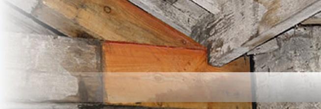 - Timber Repair