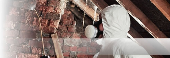 Damp Proofing & Timber Treatment Worcs Staffs West Mids - Woodworm Treatments